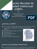 Organizacion Mundial de la Propiedad Intelectual (OMPI) (1)