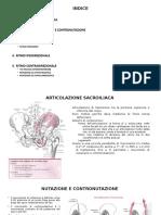 Presentazione sull'anca.pptx