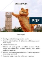 prezentare OSTEOLOGIA