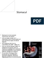 Stomacul 2