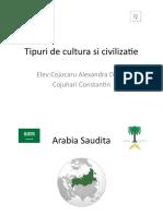 Tipuri de cultura si civilizatie