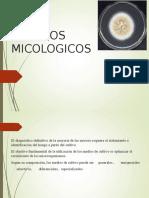 CLASE 5 MEDIOS DE CULTIVO, INMUNOMICOLOGIA Y BIOSEGURIDAD  .ppt