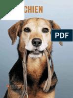mon_chien.pdf