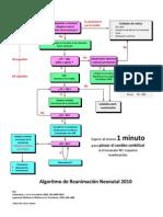 Algoritmo RCP Neonatal 2010