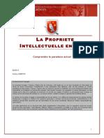 Propriete_intellectuelle_en_chine impooooo
