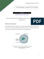 Adaptation to strength training PTC8.pdf