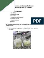 Laboratorio 1 de Biología Molecular