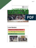 Diseno_y_Financiamiento_de_Proyectos_Cul.pdf