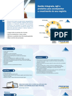 Folder-ERP-Piramide-procenge