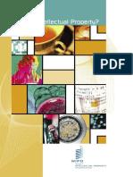 IPR intro.pdf
