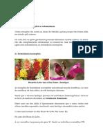 BIOLOGIA 11º ANO-Ficha n.º 2