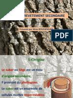 Cours 7- Tissu de revêtement secondaire.pdf