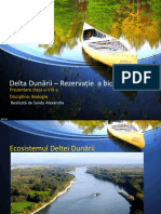 Delta Dunării Sandu Alexandra