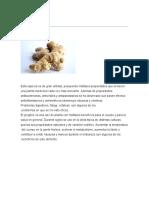 PLANTAS MEDICINALES 2018.docx
