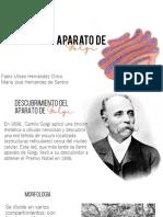 Aparato-de-golgi Expo Presetacion 1.pdf