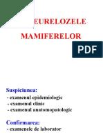 06.Diagnosticul in pasteureloza mamiferelor.1