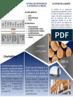 Informe Ejecutivo - Madera