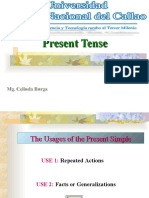 Present Simple ppt -