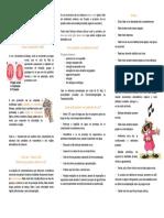 DiaMVoz.pdf