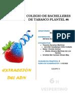 ADN de la FresaB OFICIAL.pdf