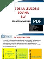 Virus_Leucosis_Bovina_en_Cancer_de_Mama.pdf