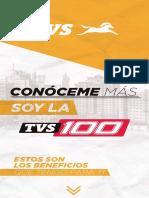 TVS 100 ES