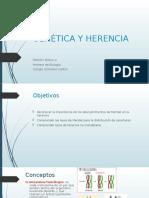 GENÉTICA Y HERENCIA 8°.ppt