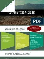 COCAINA EFECTOS.pptx