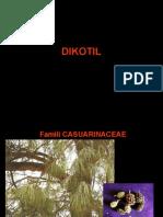 KULIAH-IIC-DICOTYLEDONEAE