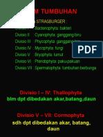 KULIAH-IIB-MONOCOTYLEDONEAE.ppt