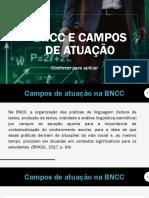 Aula 4_BNCC e campos de atuação.pdf