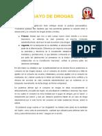 ENSAYO DROGAS.docx