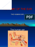 01.ANATOMY OF THE EAR