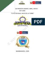 PLAN DE TRABAJO REMOTO 2020 CIST VRHT