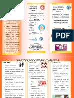 Practicas de cuidado y crianza folleto