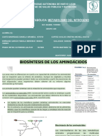 Biosíntesis de aminoácidos.pdf