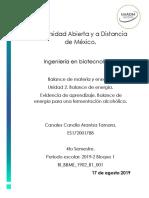 BI_BBME_U2_EA_ARCC.pdf