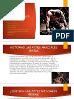 EXPOSICION ARTES MARCIALES MIXTAS.pptx