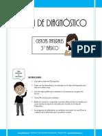 PRUEBA_DE_DIAGNOSTICO_CNATURALES_3BASICO_2013.pdf