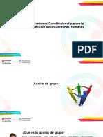 Mecanismos Constitucionales-  accion de grupo