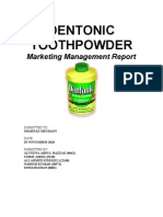 finalmarketingreport dentonic
