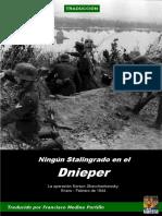 Ningún Stalingrado en El Dnieper - Delaguerra.net