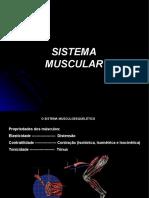 Aula 02_sistema muscular_parte 1 (1).pdf