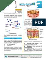1 Tecido Epitelial.pdf