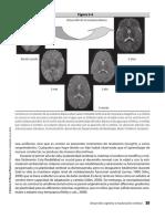 Neuropsicologia_del_Desarrollo_Infantil (5)