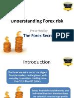 Understanding Forex Risk