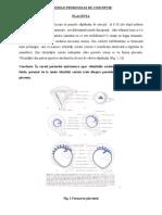 Anexele produsului de conceptie 1