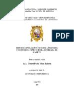 Lexico CAMOTE.docx