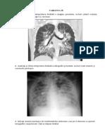 967877_Varianta-IX (1).pdf