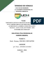 CERCEDO CERVANTES, Roxana.pdf